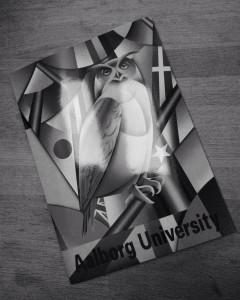 Valget faldt på Aalborg Universitet