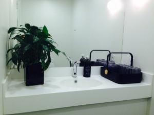 Sådan kan et DSB toilet også se ud :)