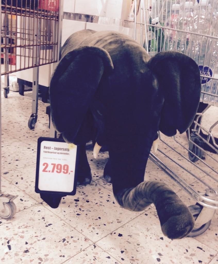 En sød lille elefant :)